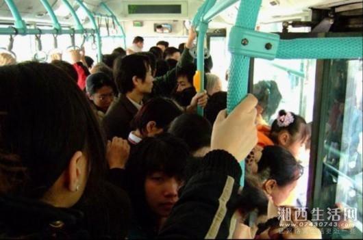 公交车4.jpg