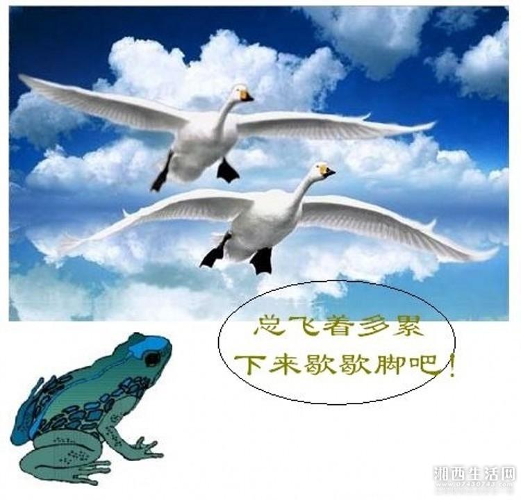 2011071311251453_conew1.jpg