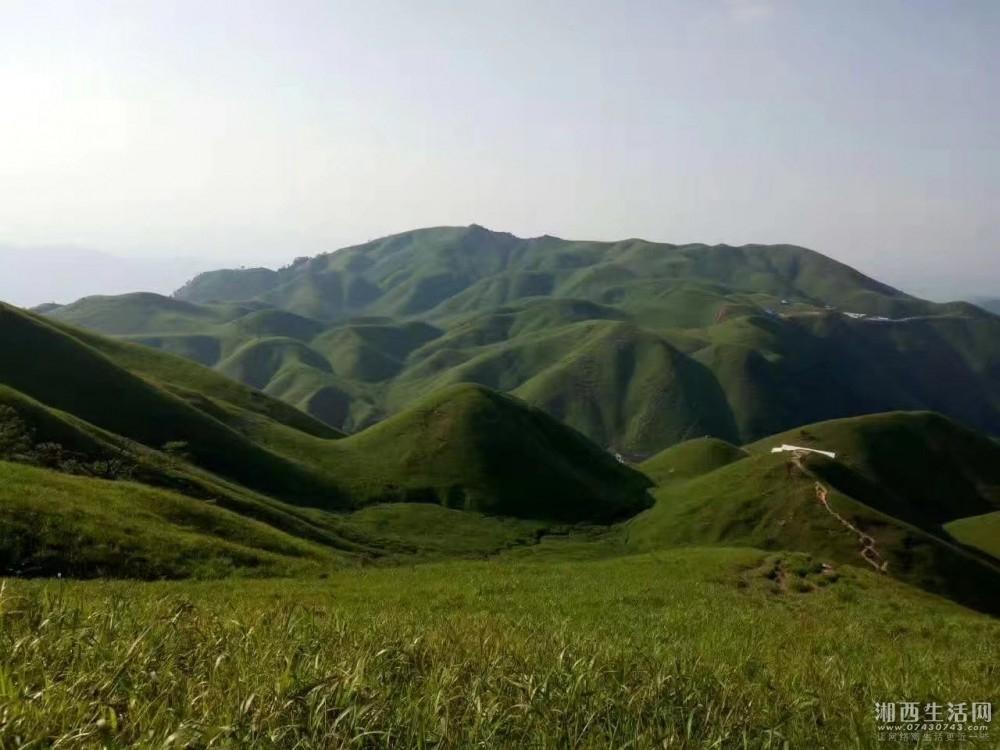 高山草甸---爬的我边走边哭,但是累并快乐着。因为是和同学去(和有趣的人,去那里都好玩,O(∩_∩)O哈哈哈 ...