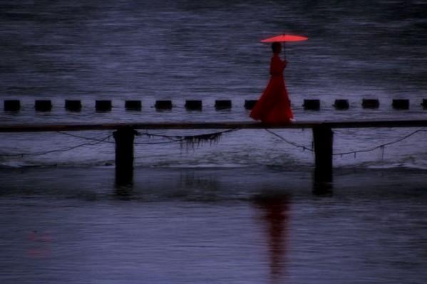 秋  雨 023.jpg