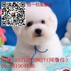 TB2CXH9pZtnpuFjSZFvXXbcTpXa_!!3164629783.jpg
