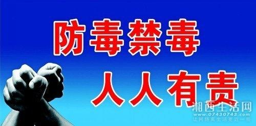 jinduhaibao_4337280_conew1.jpg